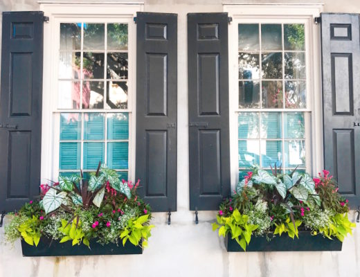 Window Boxes, Charleston, Charming Cities, Best US Cities, Best Cities, Popular Cities, Charleston Landmark, South Carolina, Things to Do in Charleston, Charleston Activities, Charleston Sites, Historic Charleston, Southern Charm, Charleston Window Boxes, Charleston Charm