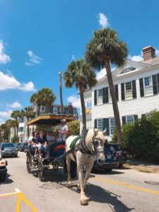 The Battery, Charleston, Charming Cities, Best US Cities, Best Cities, Popular Cities, Charleston Landmark, South Carolina, Things to Do in Charleston, Charleston Activities, Charleston Sites, Historic Charleston, Southern Charm, Charleston Carriage Ride